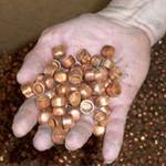 bullet cups sorted by gi-100 ammunition inspection system